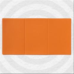 Pochette de carte grise moltonnée