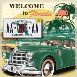 Plaque US PLEXIGLAS® 300x150mm - Florida